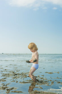 Germany, Schleswig Holstein, Boy playing in mud at beach - MJF000214