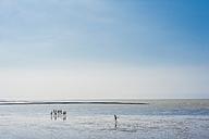 Germany, Schleswig Holstein, Children playing at beach - MJF000217