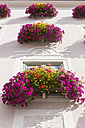 Germany, Bavaria, Decorated window with flowers - AM000467