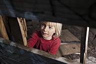 Germany, North Rhine Westphalia, Cologne, Boy looking away, smiling - FMKYF000445