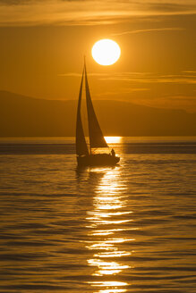 Germany, View of sailing boat in Lake Constance - SH000778