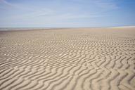 Denmark, Romo, Sand dunes at North Sea - MJF000250
