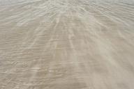 Denmark, Romo, Sand dunes at North Sea - MJF000257