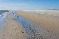 Denmark, Romo, Sand dunes at North Sea - MJF000259