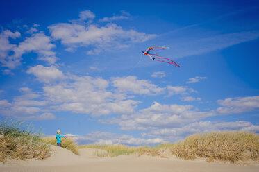 Denmark, Romo, Boy flying kite at North Sea - MJF000269