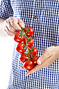 Mature man holding bunch of tomatoes, close up - MAEF006876
