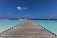Maldives, Jetty on Maldive Island - AM000590