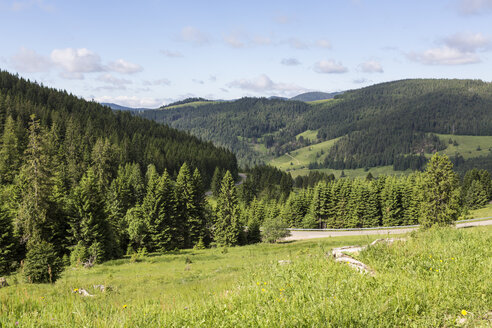 Germany, Baden Wuerttemberg, View of Black Forest - MAB000123