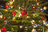 Christmas baubles hanging on tree, close up - SKF001327