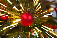 Red christmas bauble hanging on tree, close up - SKF001329