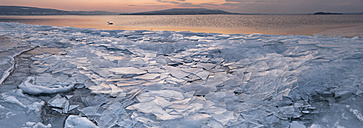 Germany, Field of ice floes and mute swan at Lake Constance - SH000834