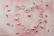 Heart shaped formed with pink cherry blossom, close up - ASF005025