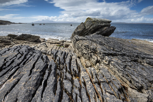 United Kingdom, Scotland, Isle of Skye,  View of lava formation on Elgol Bay - ELF000283