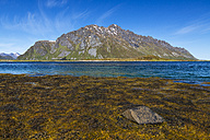 Norway, View of island landscape - STSF000063