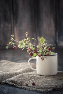 Germany, Baden Wuerttemberg, Bouquet of wild strawberries in enamel cup on rug - SBDF000123