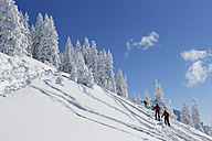 Germany, Bavaria, People skiing at Tegelberg Mountain - SIE004145