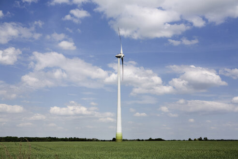 Germany, Brandenburg, wind turbines in green field - CNF000013