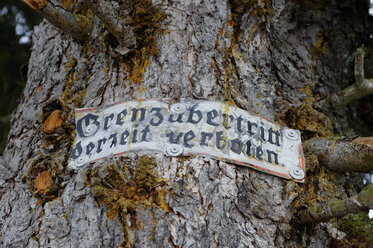 Germany, Old sign on tree trunk - LB000201