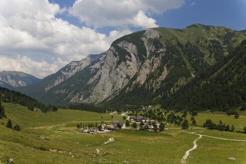 Austria, Tyrol, View of mountain pasture - GF000209