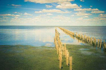 Germany, Mecklenburg-Vorpommern, View of wooden post at sea - MJ000341