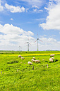 Germany, Schleswig-Holstein, View of sheep grazing in field and wind turbine in background - MJF000321