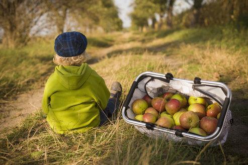 Germany, Saxony, Boy sitting with basket full of apples - MJF000317