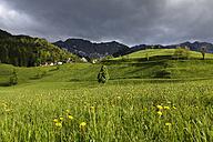 Austria, Carinthia, View of village near Karawanks mountain range - SIEF004250