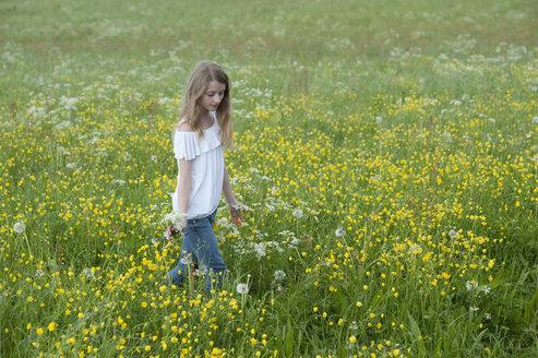 Germany, Bavaria, Girl walking in meadow - CRF002466