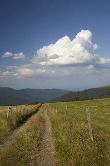 France, View of landscape - DHL000022