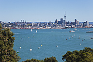 New Zealand, View of Auckland skyline - GWF002382
