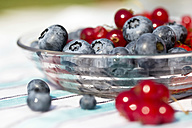 Germany, Bavaria, Blueberries and red currant in glass bowl - SARF000103
