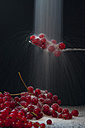 Red currant on spoon, close up - BST000097
