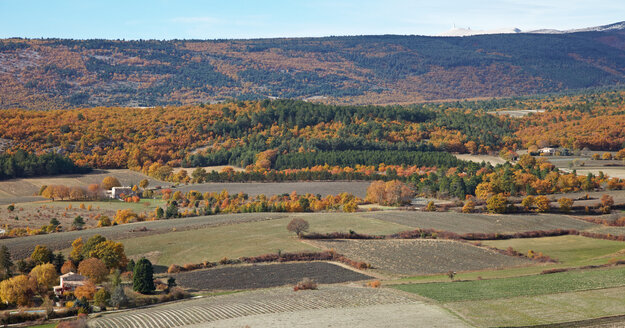 France, Landscape in autumn near Sault and Mont Ventoux in background - DHL000043