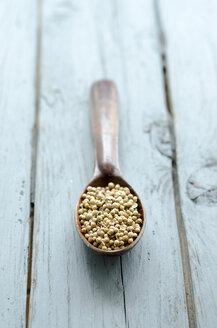 Coriander on wood spoon - ODF000382