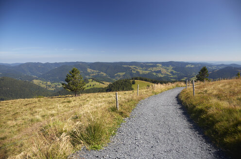 Germany, Baden-Wuerttemberg, Black Forest, circle path at Belchen - DHL000059
