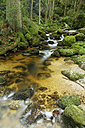 Austria, Lower Austria, Ysper valley, great Ysper - GFF000252