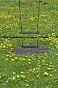 Swing and meadow - AXF000476