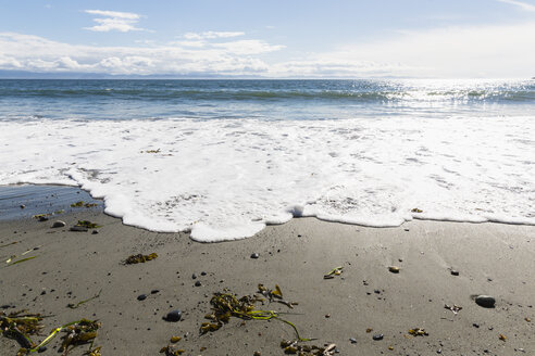 Canada, British Columbia, Vancouver Island, French Beach Provincial Park - FOF005248