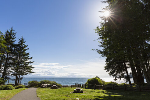 Canada, British Columbia, Vancouver Island, Picnic area at French Beach Provincial Park - FO005250