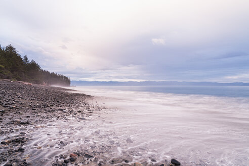 Canada, British Columbia, Vancouver Island, French Beach Provincial Park - FOF005253