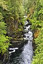 Canada, British Columbia, Vancouver Island, Englishman River Falls Provincial Park - FO005274