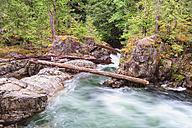 Canada, British Columbia, Vancouver Island, Little Qualicum Falls Provincial Park - FOF005277