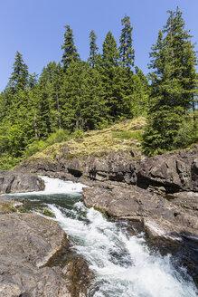 Canada, British Columbia, Vancouver Island, Elk Falls Provincial Park - FOF005286