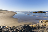 Canada, British Columbia, Vancouver Island, Pacific Rim National Park Reserve of Canada, Combers Beach - FOF005301