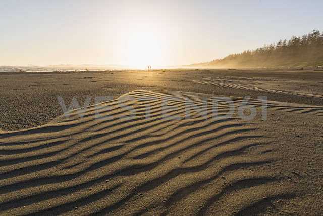 Canada, British Columbia, Vancouver Island, Pacific Rim National Park Reserve of Canada, Long Beach at sunrise - FOF005288