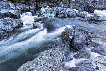 Canada, Vancouver Island, Wally Creek - FOF005312