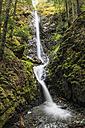 Canada, Vancouver Island, Lupin Falls - FOF005322