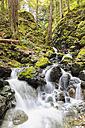 Canada, Vancouver Island, Lupin Falls - FO005323