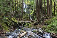 Canada, Vancouver Island, Lupin Falls - FOF005325