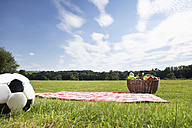 Germany, Cologne, Picnic basket and soccer ball in meadow - PDF000391